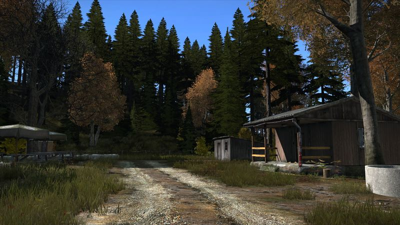 camp d'été dans la forêt