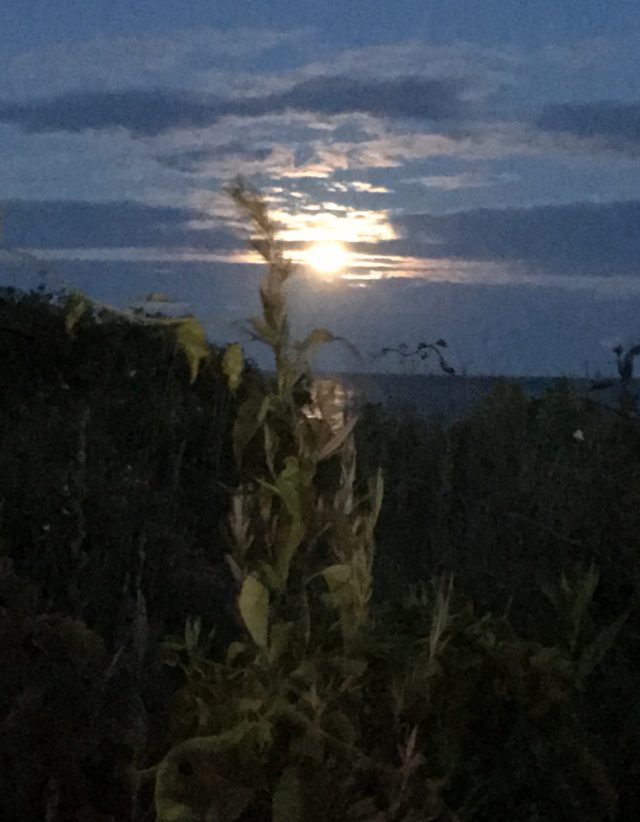 Chasing the Strawberry Moon